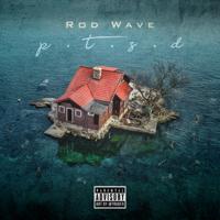 Rod Wave - PTSD artwork