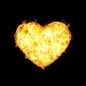 The SunBears - Set Fire to My Heart