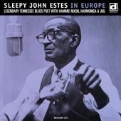 Sleepy John Estes - Needmore Blues
