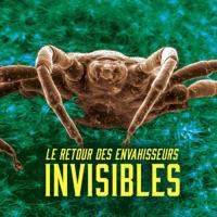 Télécharger Le retour des envahisseurs invisibles Episode 1