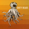 Dirty Heads - Dirty Heads Album
