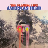 The Flaming Lips - Assasins of Youth