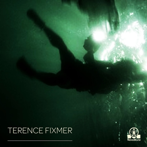 The Swarm EP by Terence Fixmer