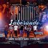 Seguimos Laborando - En Vivo by Grupo 360 iTunes Track 1