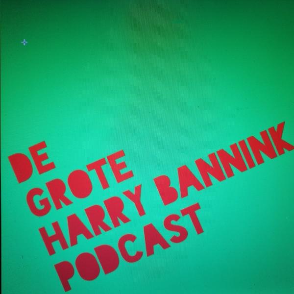 De Grote Harry Bannink Podcast