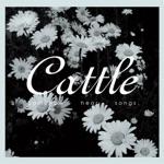Cattle - Fluff