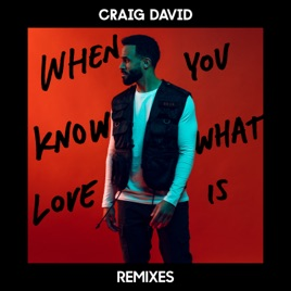 Craig David – When You Know What Love Is (Remixes) – Single [iTunes Plus AAC M4A]