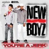 New Boyz - You're A Jerk (Explicit Album Version)