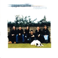 Nadurra by Capercaillie on Apple Music
