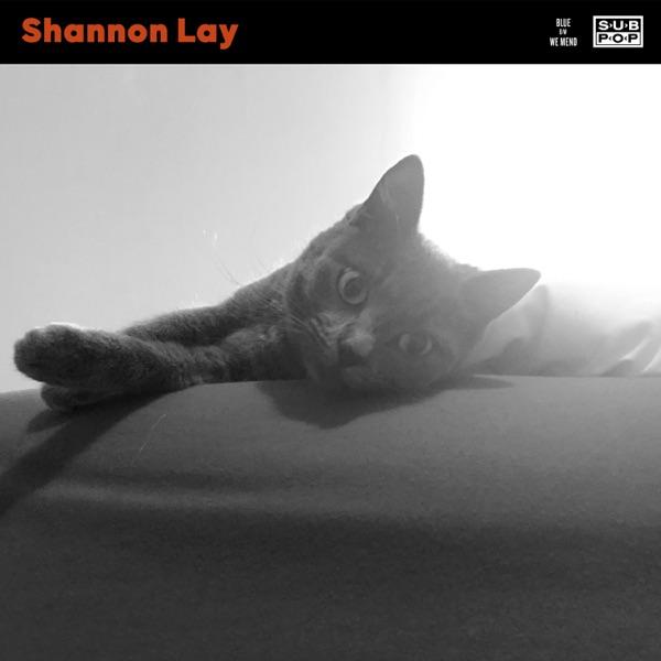 Shannon Lay Blue