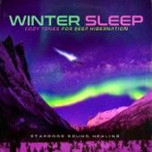 stargods Sound Healing - 528Hz Love Frequency Warmth on a Cold Night Deep Sleep