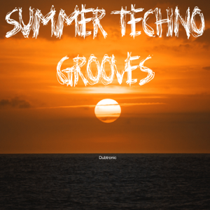 Various Artists - Summer Techno Grooves