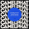 Be Someone - CamelPhat & Jake Bugg mp3