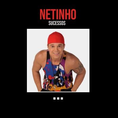 Sucessos - Netinho