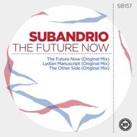 The Future Now - SUBANDRIO
