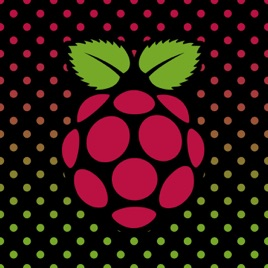 Raspberry Pi: CircuitPython on Linux and Orange Pi #linux