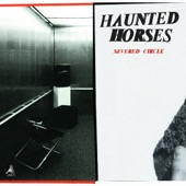 Haunted Horses - Desert in a Room