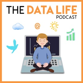 The Data Life Podcast: Review of Udacity Nanodegrees - are