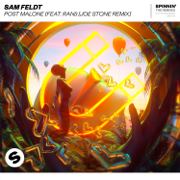Post Malone (feat. RANI) [Joe Stone Remix] - Sam Feldt - Sam Feldt