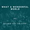 Reuben And The Dark - What a Wonderful World artwork