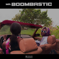 Download Mp3 Blaqbonez - Mr. Boombastic