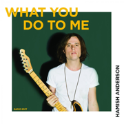 What You Do to Me (Radio Edit) - Hamish Anderson - Hamish Anderson