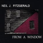 Neil J. Fitzgerald - Kaleidoscope