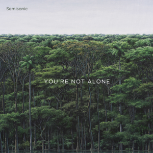 Semisonic - You're Not Alone - EP