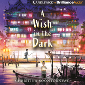 A Wish in the Dark (Unabridged)