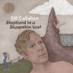 Bill Callahan - Call Me Anything