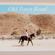 Old Town Road (Acoustic) - Tiffany Alvord