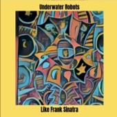 Underwater Robots - Fort Knox