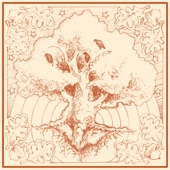 White Oak Splits - El Cinco Negro