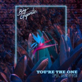 Big Gigantic - You're the One (feat. Nevve)