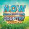 NOW That's What I Call Music Country 13