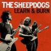 The Sheepdogs - I Don't Know ilustración