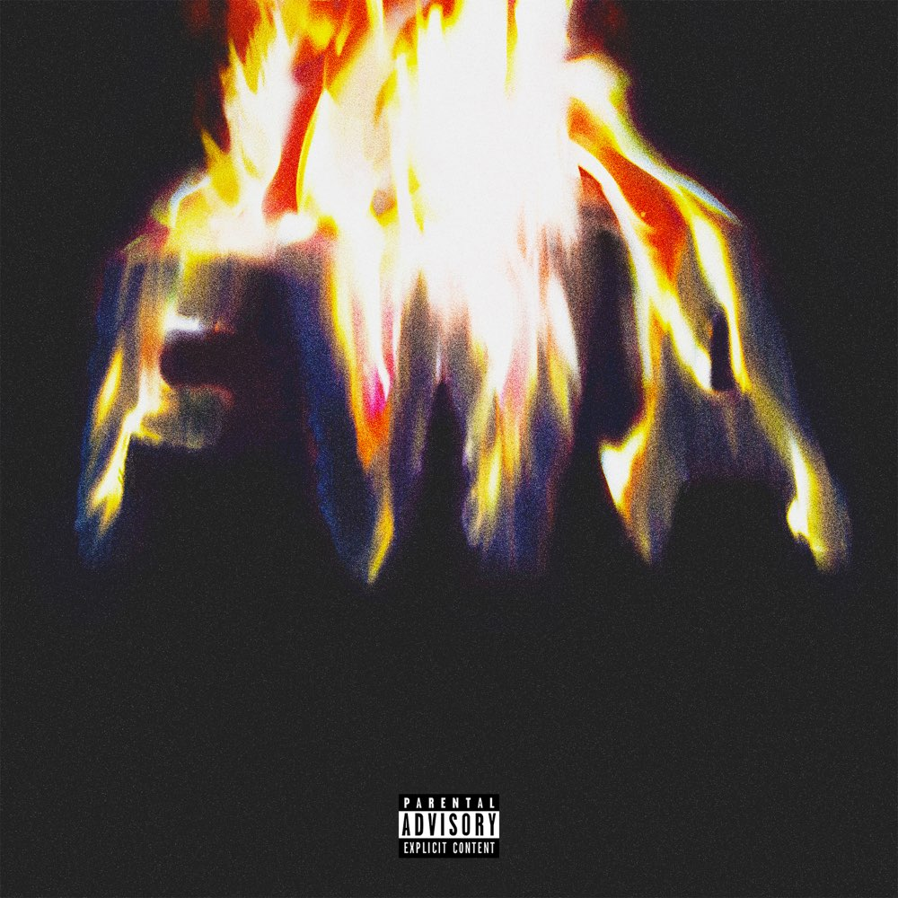 Lil Wayne – FWA – Album (iTunes Plus M4A)