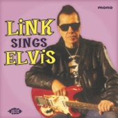 Link Wray - Little Sister