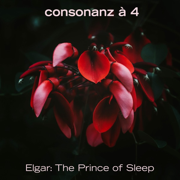 The Prince of Sleep - Single