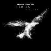 Birds - IMAGINE DRAGONS - ELISA