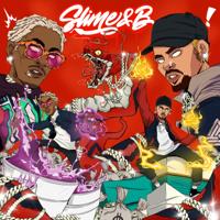 Chris Brown & Young Thug - Slime & B artwork