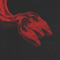 Змея - KRESTALL COURIER - ПАШКА - MOZEE MONTANA