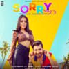 Sorry Song - Neha Kakkar & Maninder Buttar mp3