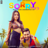 [Download] Sorry Song MP3