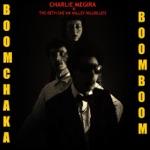 Charlie Megira & The Bet She' an Valley Hillbillies - Dunkel Party