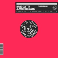 Thing for You (Record Mix) - DAVID GUETTA - MARTIN SOLVEIG