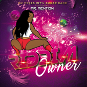 Riddim Owner (feat. Mr Mention) - Nu Vybes INT'L Sugar Band