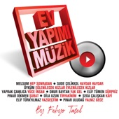 Haydar Haydar (feat. Sude Çelikkol) artwork
