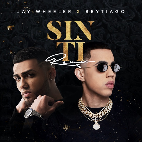 Sin Ti (Remix) - Single