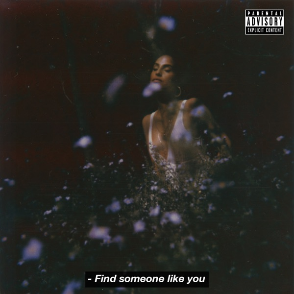 Find Someone Like You - Single